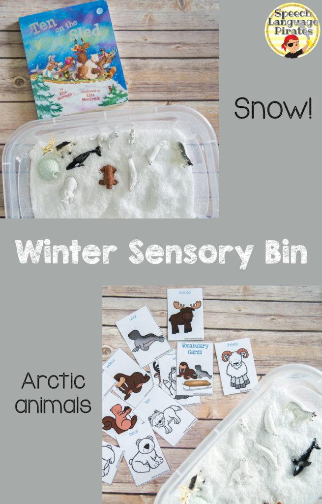 Arctic Sensory Bin